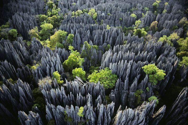 Tsingy-de-Bemaraha